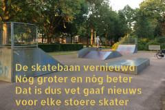 107 37 50 Skatebaan 22-06-2017 (Medium)