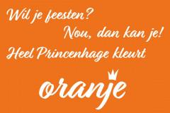 142-32-51 Oranje 26-04-2018(medium)