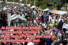 184-34-52-Vrijmarkt-in-t-Aogje-23-05-2019-Medium